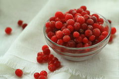 Berries cranberries, frosted, glass plate in front of a white linen cloth, close-up Royalty Free Stock Photography