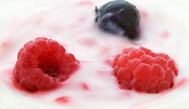 Berries and Cream Stock Photography