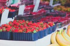 berries cream summer 免版税库存照片