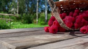 Berries crumble on the wooden table