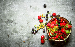 Berries in a Cup. On stone table. Royalty Free Stock Photo