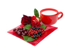 Berries, currant, cherry, roses and cup of milk. Raspberries, currant, cherry, roses and cup of milk are on a white background Royalty Free Stock Image