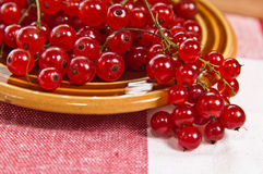 Berries of a currant in a plate on a table Stock Photos