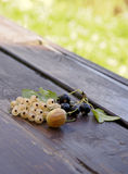 Berries of the currants and the gooseberry. On the wood in a countryside Royalty Free Stock Photo