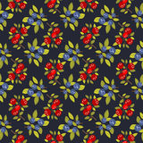 Berries dark seamless background Royalty Free Stock Image