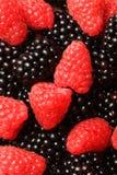 Berries Dessert Stock Images