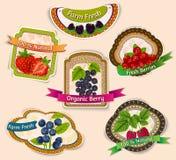 Berries emblems set Stock Photos
