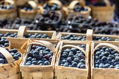 Berries at the farmers market Royalty Free Stock Images