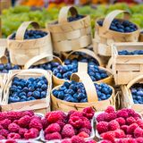 Berries at the farmers market Royalty Free Stock Photo