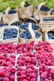 Berries at the farmers market Stock Image