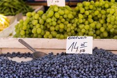 Berries at the farmers market in Poland. Stock Photos