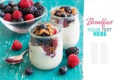 Berries, flakes and fresh greek yogurt in a jar Stock Photos