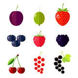 Berries. Flat vector illustration Royalty Free Stock Images