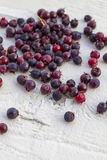 Berries. Food background. Royalty Free Stock Photography