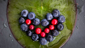 Berries. Formed as a heart on a lilly leaf Stock Images
