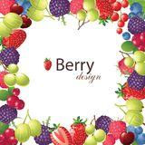 Berries Frame Royalty Free Stock Images