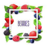 Berries And Frame Realistic Set Royalty Free Stock Photos