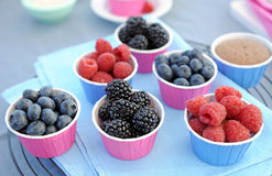 Berries. Fresh berries fruit - close up Royalty Free Stock Photo