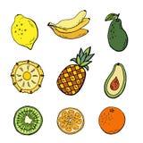 Tropical fruits set stock illustration