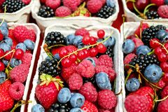 Berries, Fruit, Fruits, Mixed Stock Image