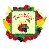 Berries and fruit. Label. Vector Royalty Free Stock Photo