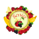 Berries and fruit. Label. Vector Stock Photo
