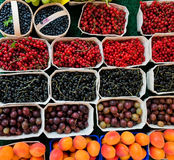 Berries and fruit Stock Image