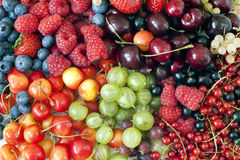 Berries and fruits background Stock Photography