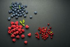 Berries fruits on black background Stock Images