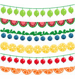 Berries and fruits garland Royalty Free Stock Image