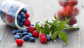 Berries in glass jars on a wooden table and a branch with a flow. Er and raspberry leaves Royalty Free Stock Photography