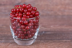Berries in a glass Royalty Free Stock Photo
