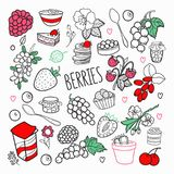 Berries Hand Drawn Doodle. Outline Berry Set with Grape, Cherry and Strawberry. Vector illustration Stock Photos