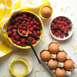 Berries. Handcarved wooden spoon and cranberries Royalty Free Stock Image