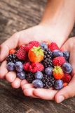 Berries in hands Royalty Free Stock Photos