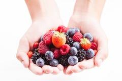 Berries in hands Stock Photos