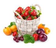 Berries healthy eating fruits harvest strawberries Royalty Free Stock Photos