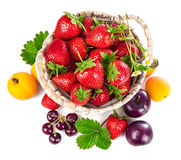 Berries healthy eating fruits harvest strawberries Stock Image