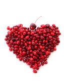 Berries heart royalty free stock image