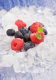 Berries on ice Stock Photo