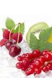 Berries on ice Stock Photos