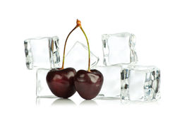 Berries and ice cubes Royalty Free Stock Images