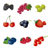 Berries icon set Royalty Free Stock Photography
