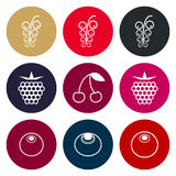 Berries icon set in muted tones Royalty Free Stock Photo