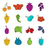 Berries icons doodle set Stock Images