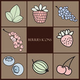 Berries icons Royalty Free Stock Image