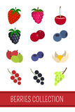 Berries icons set Stock Image