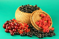 Berries In A Basket. Stock Photography