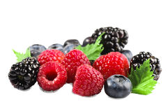 Berries isolated. Royalty Free Stock Photos