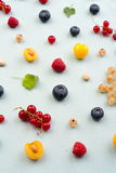 Berries isolated over white background table. Stock Photos